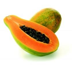Semillas de Papaya Maradol