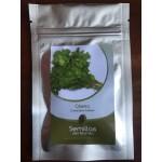 Semillas de Cilantro Coriandrum sativum