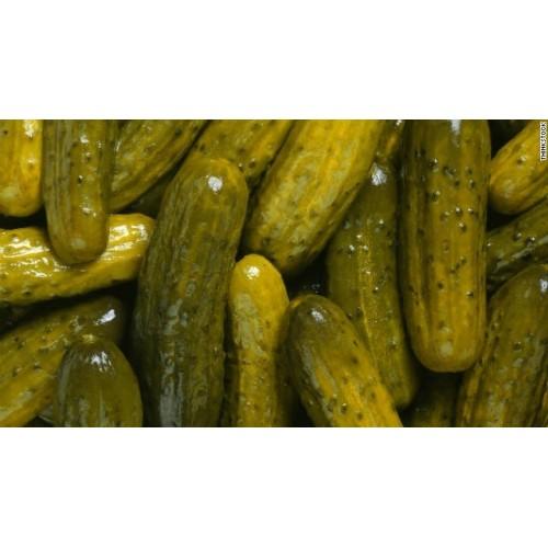 Semillas de pepinillo pickle tienda virtual de semillas for Semillas de cactus chile